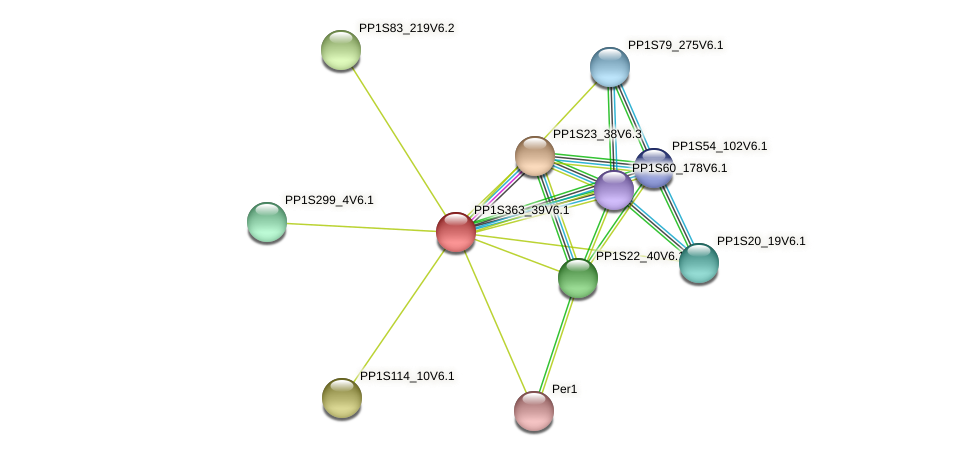 PP1S363_39V6.1 protein (Physcomitrella patens) - STRING interaction network