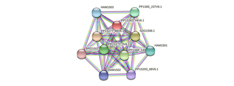 PP1S363_44V6.1 protein (Physcomitrella patens) - STRING interaction network
