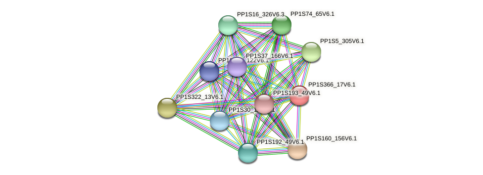 PP1S366_17V6.1 protein (Physcomitrella patens) - STRING interaction network