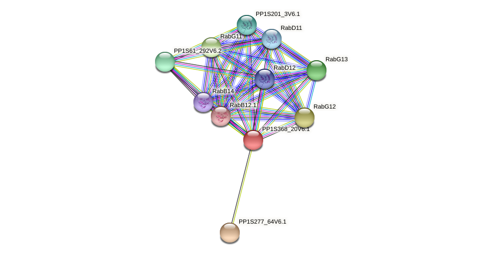 PP1S368_20V6.1 protein (Physcomitrella patens) - STRING interaction network