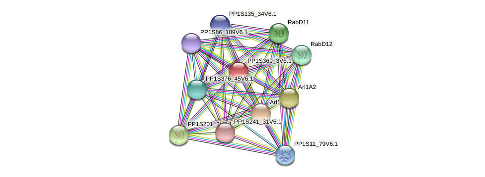 PP1S369_3V6.1 protein (Physcomitrella patens) - STRING interaction network