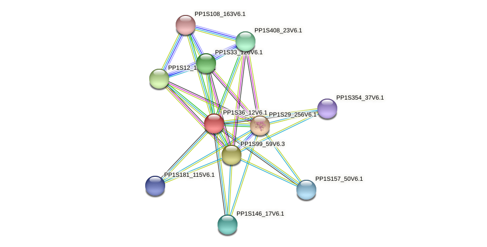 PP1S36_12V6.1 protein (Physcomitrella patens) - STRING interaction network