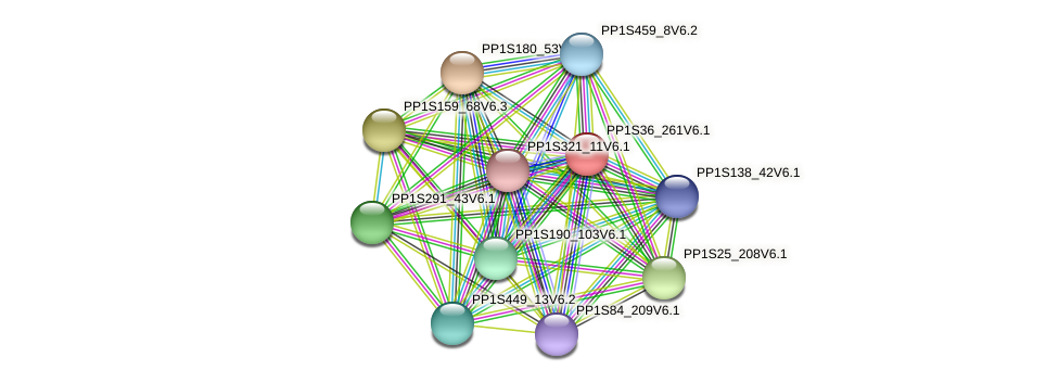 PP1S36_261V6.1 protein (Physcomitrella patens) - STRING interaction network