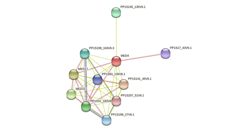 PP1S36_292V6.5 protein (Physcomitrella patens) - STRING interaction network