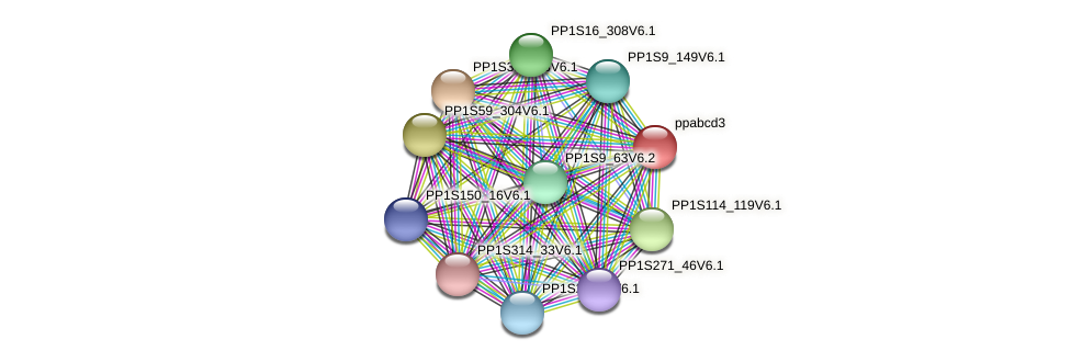 ppabcd3 protein (Physcomitrella patens) - STRING interaction network