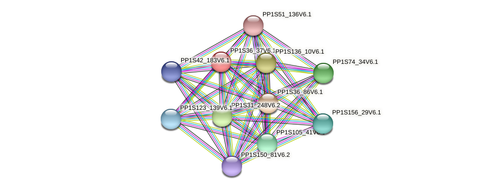 PP1S36_37V6.1 protein (Physcomitrella patens) - STRING interaction network