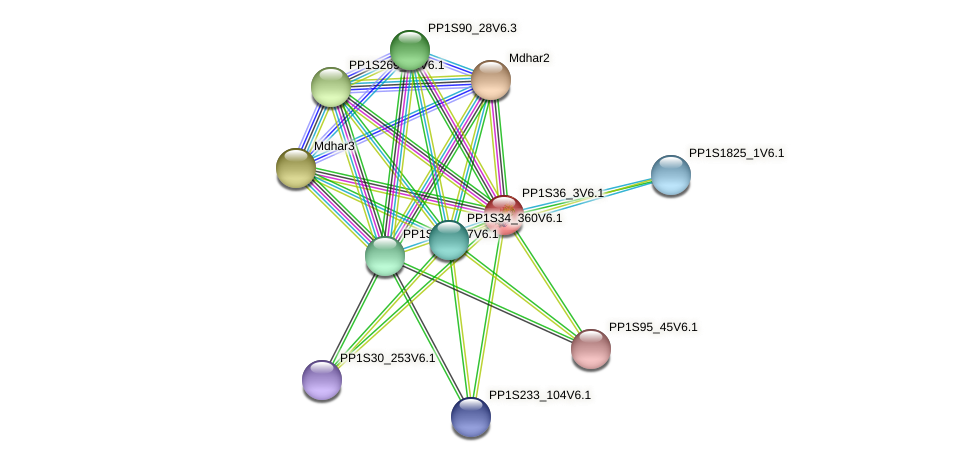 PP1S36_3V6.1 protein (Physcomitrella patens) - STRING interaction network