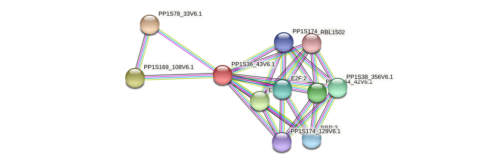 PP1S36_43V6.1 protein (Physcomitrella patens) - STRING interaction network