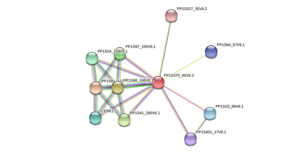 PP1S370_45V6.1 protein (Physcomitrella patens) - STRING interaction network