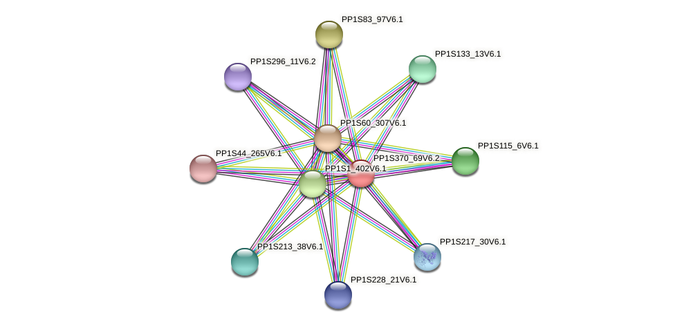 PP1S370_69V6.1 protein (Physcomitrella patens) - STRING interaction network