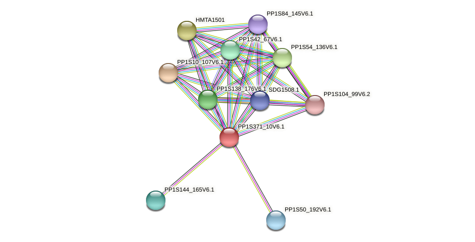 PP1S371_10V6.1 protein (Physcomitrella patens) - STRING interaction network
