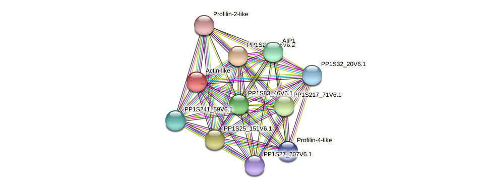 PP1S372_48V6.1 protein (Physcomitrella patens) - STRING interaction network
