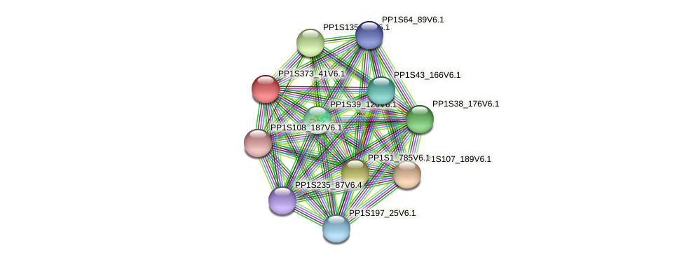 PP1S373_41V6.1 protein (Physcomitrella patens) - STRING interaction network
