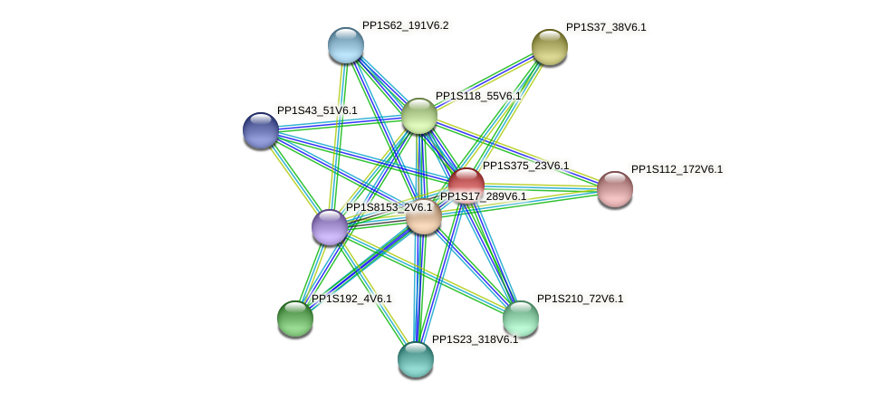 PP1S375_23V6.1 protein (Physcomitrella patens) - STRING interaction network