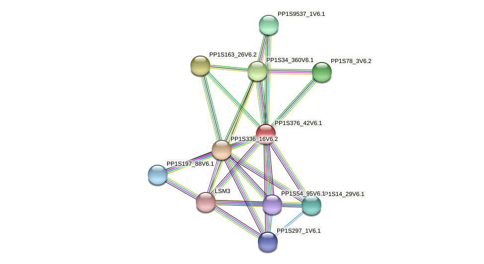 PP1S376_42V6.1 protein (Physcomitrella patens) - STRING interaction network
