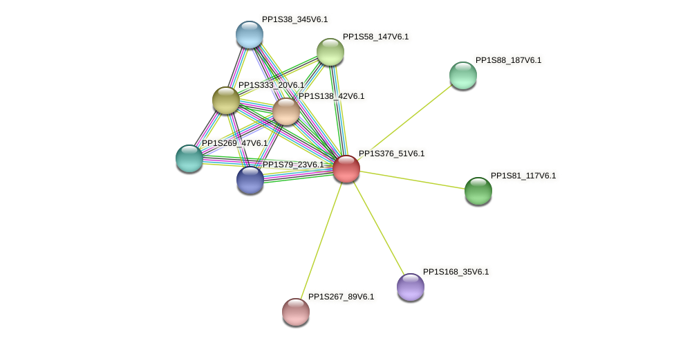 PP1S376_51V6.1 protein (Physcomitrella patens) - STRING interaction network