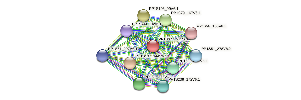 PP1S377_21V6.3 protein (Physcomitrella patens) - STRING interaction network