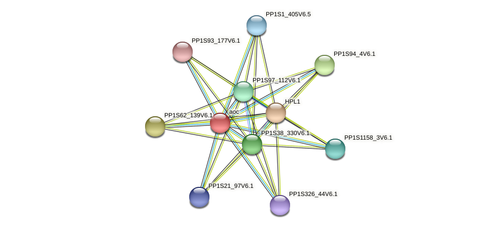 aoc protein (Physcomitrella patens) - STRING interaction network