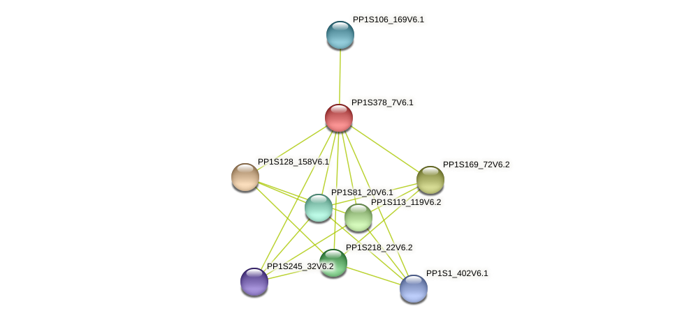 PP1S378_7V6.1 protein (Physcomitrella patens) - STRING interaction network