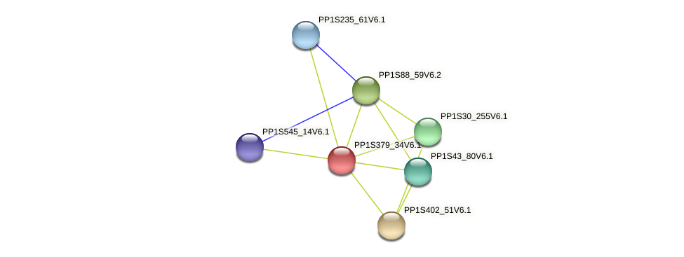 PP1S379_34V6.1 protein (Physcomitrella patens) - STRING interaction network