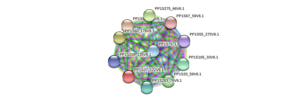 PP1S37_122V6.1 protein (Physcomitrella patens) - STRING interaction network