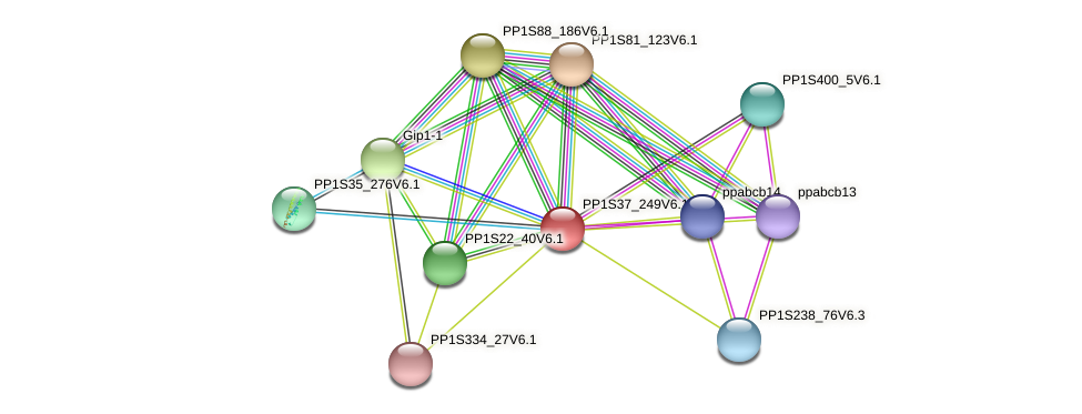 PP1S37_249V6.1 protein (Physcomitrella patens) - STRING interaction network