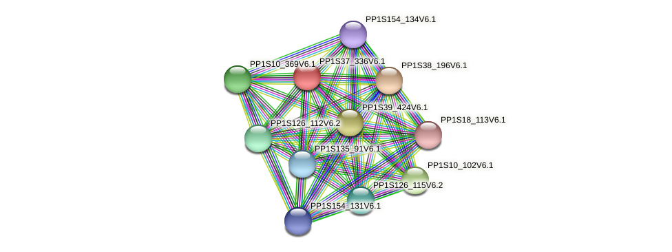 PP1S37_336V6.1 protein (Physcomitrella patens) - STRING interaction network