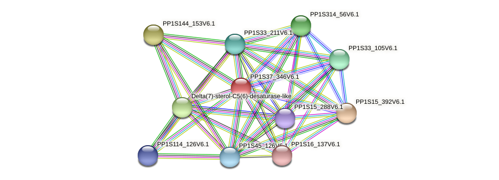 PP1S37_346V6.1 protein (Physcomitrella patens) - STRING interaction network