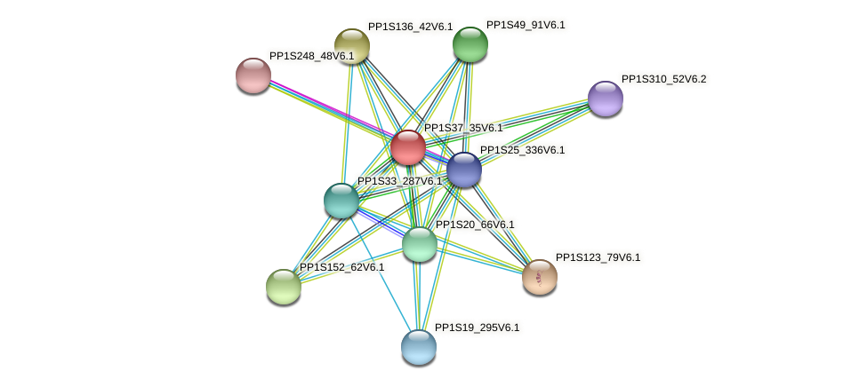 PP1S37_35V6.1 protein (Physcomitrella patens) - STRING interaction network