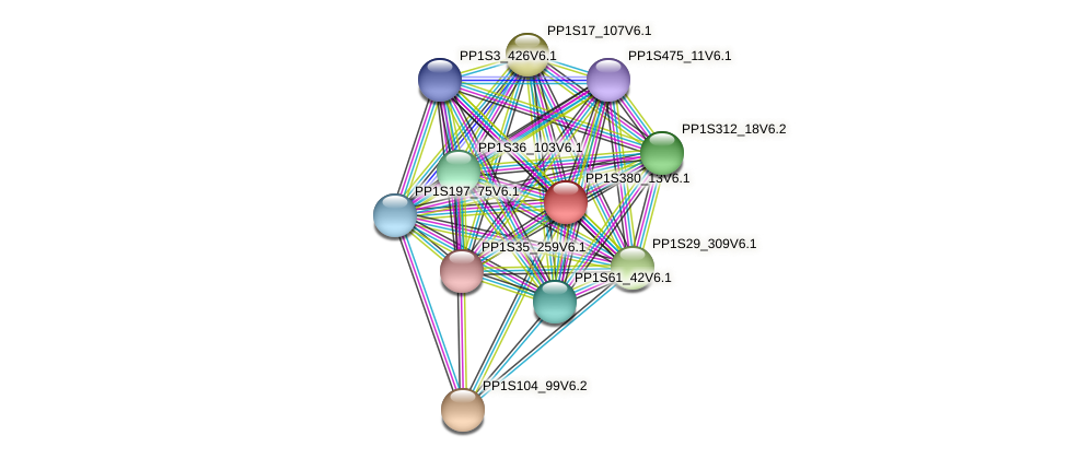PP1S380_13V6.1 protein (Physcomitrella patens) - STRING interaction network