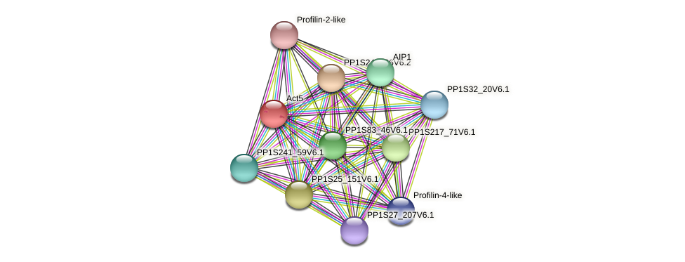 PP1S381_18V6.1 protein (Physcomitrella patens) - STRING interaction network