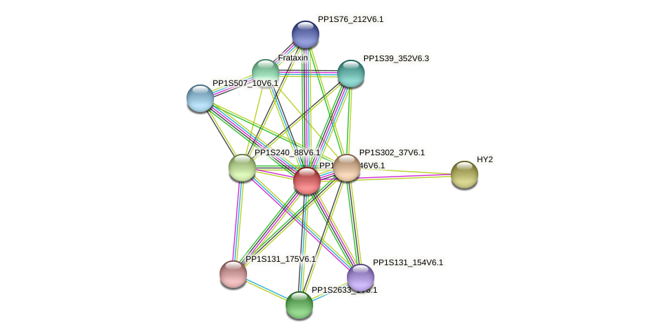 PP1S381_46V6.1 protein (Physcomitrella patens) - STRING interaction network