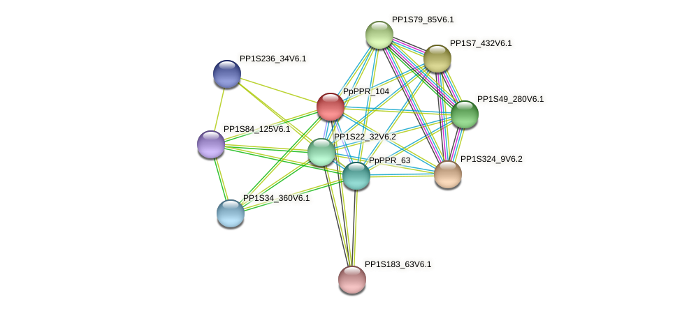 PP1S381_52V6.1 protein (Physcomitrella patens) - STRING interaction network