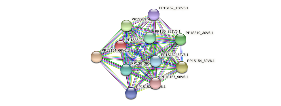 PP1S382_17V6.1 protein (Physcomitrella patens) - STRING interaction network