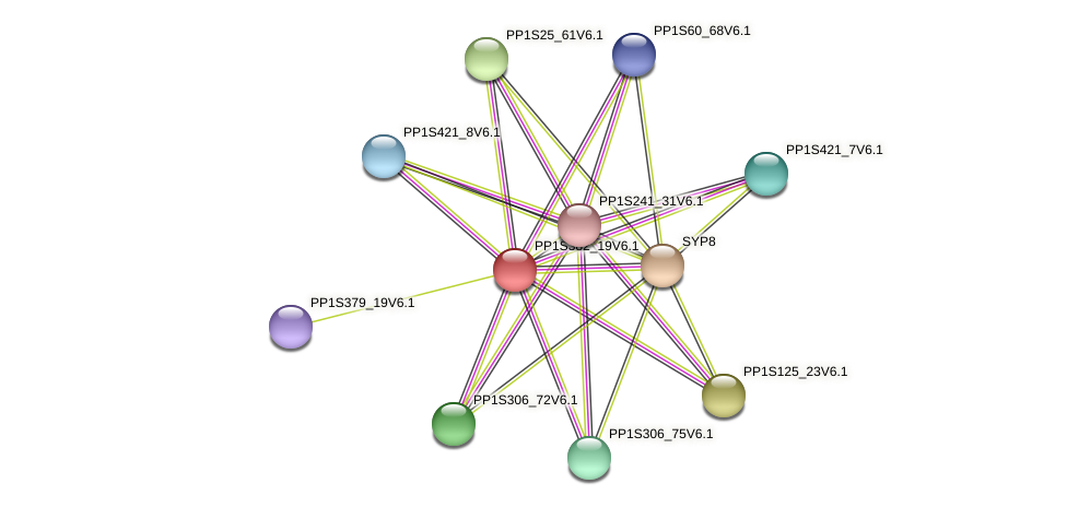 PP1S382_19V6.1 protein (Physcomitrella patens) - STRING interaction network