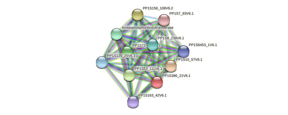PP1S386_21V6.1 protein (Physcomitrella patens) - STRING interaction network