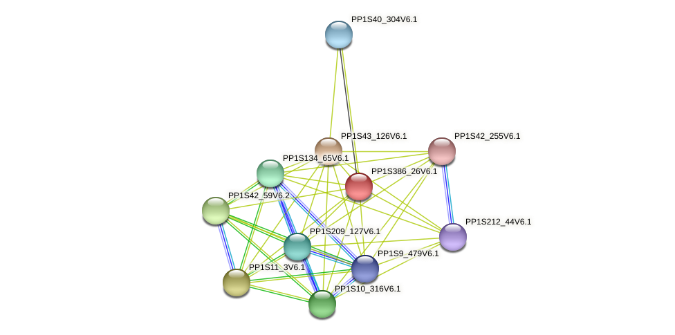 PP1S386_26V6.1 protein (Physcomitrella patens) - STRING interaction network