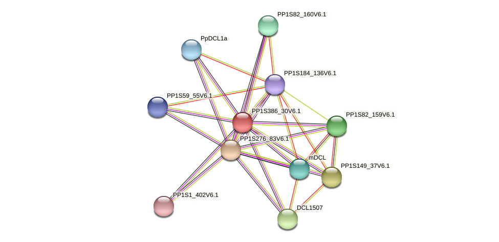 PP1S386_30V6.1 protein (Physcomitrella patens) - STRING interaction network