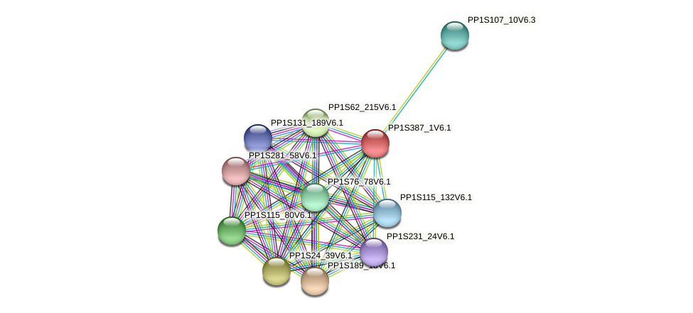 PP1S387_1V6.1 protein (Physcomitrella patens) - STRING interaction network