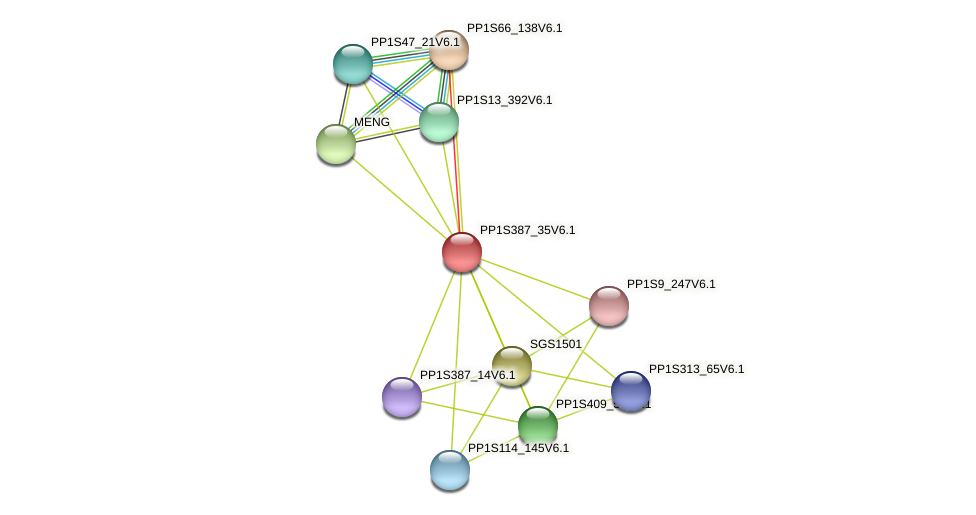 PP1S387_35V6.1 protein (Physcomitrella patens) - STRING interaction network