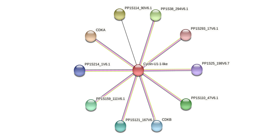 PP1S387_45V6.1 protein (Physcomitrella patens) - STRING interaction network