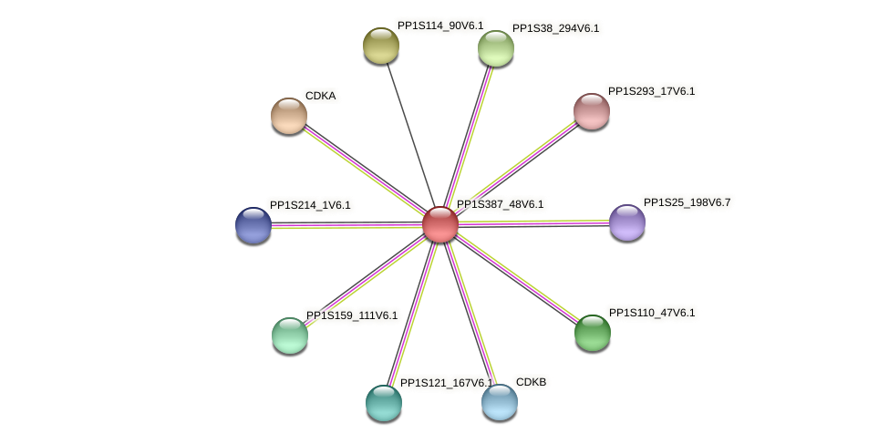 PP1S387_48V6.1 protein (Physcomitrella patens) - STRING interaction network