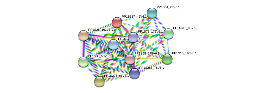 PP1S387_49V6.1 protein (Physcomitrella patens) - STRING interaction network