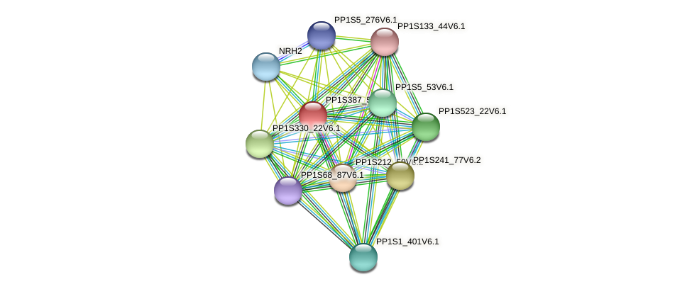 PP1S387_50V6.1 protein (Physcomitrella patens) - STRING interaction network