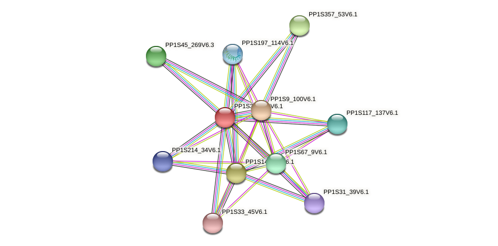 PP1S387_53V6.1 protein (Physcomitrella patens) - STRING interaction network