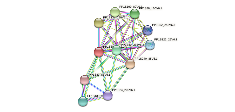 PP1S388_8V6.1 protein (Physcomitrella patens) - STRING interaction network