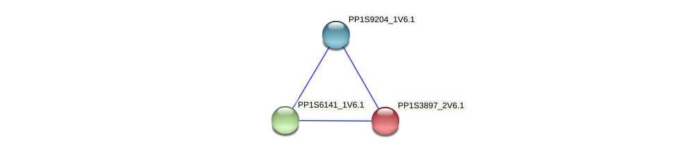 PP1S3897_2V6.1 protein (Physcomitrella patens) - STRING interaction network