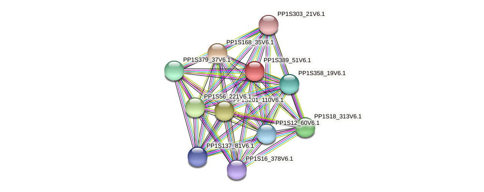 PP1S389_51V6.1 protein (Physcomitrella patens) - STRING interaction network