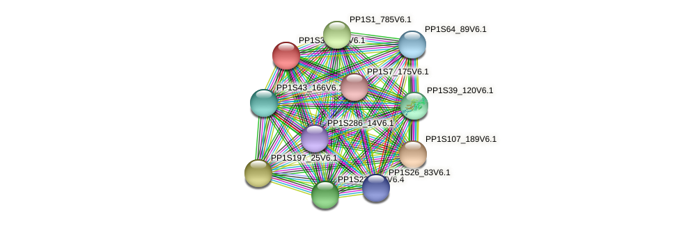 PP1S38_176V6.1 protein (Physcomitrella patens) - STRING interaction network