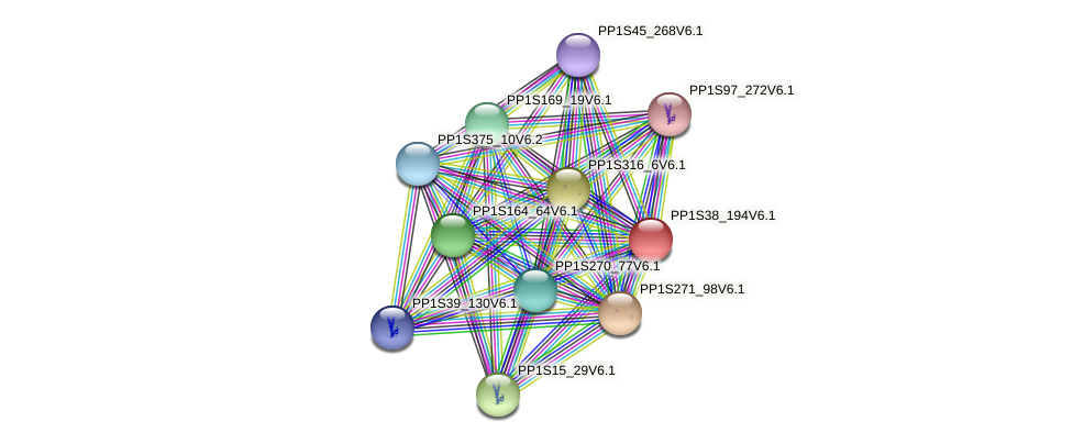 PP1S38_194V6.1 protein (Physcomitrella patens) - STRING interaction network